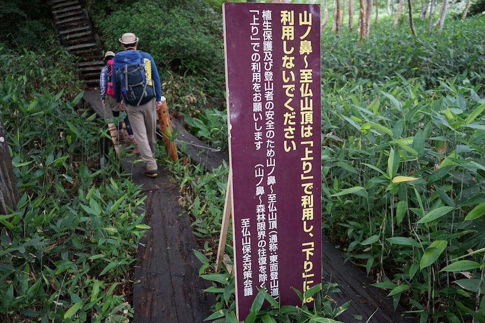 日本百名山 至仏山・谷川岳